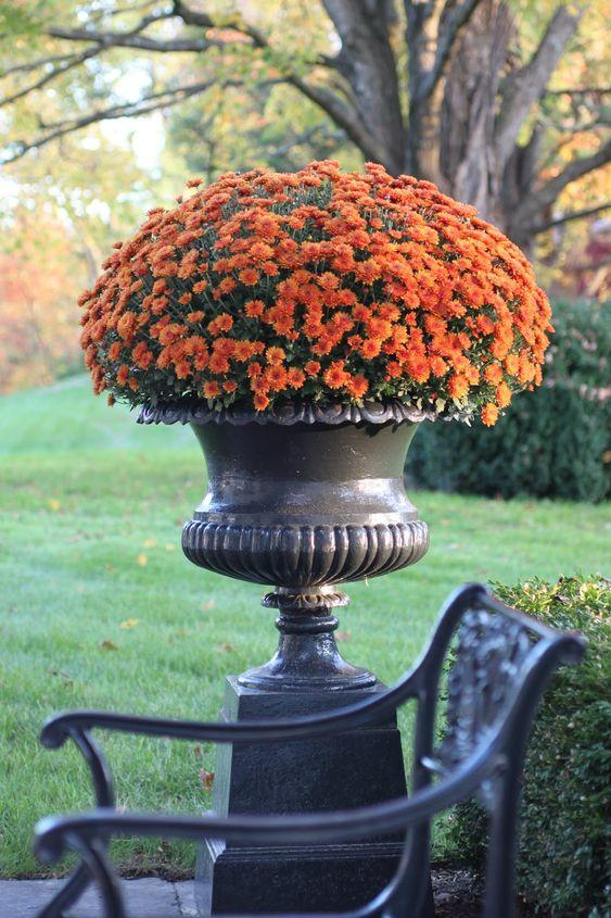 Put Them in an Urn Outside