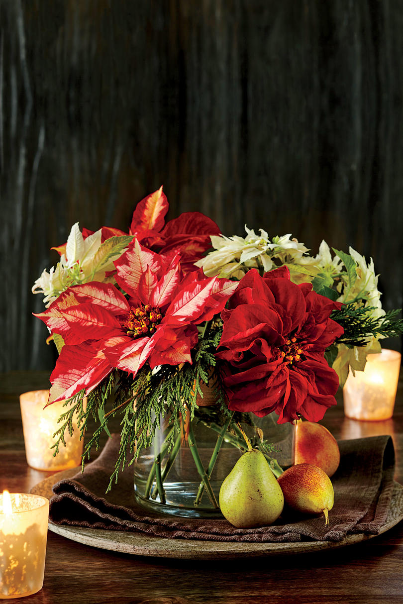 Spruced-Up Poinsettias