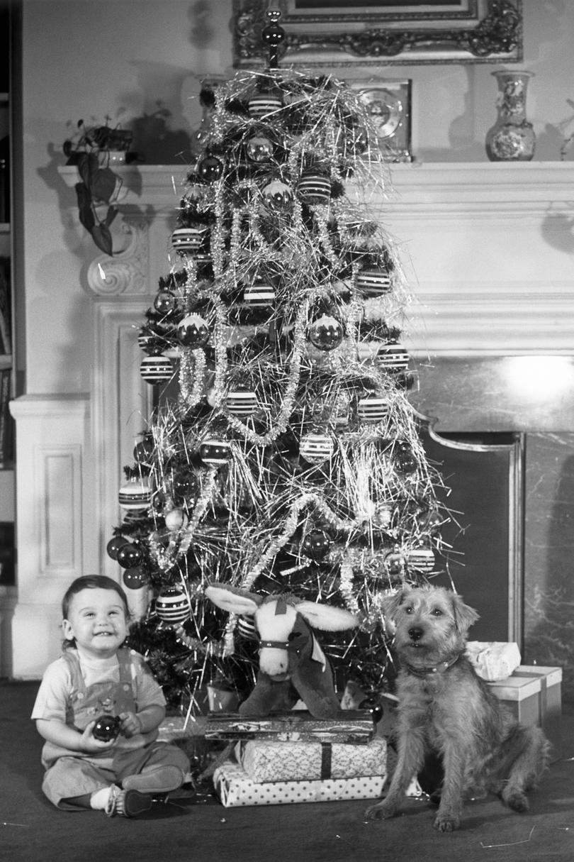 Christmas Tree with Boy and Dog