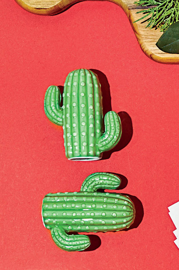 Cactus Salt and Pepper Shaker Set