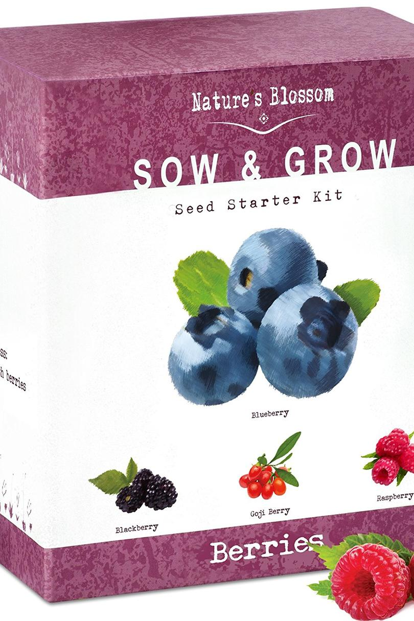 Nature's Blossom Fruit Growing Kit Amazon Prime Gift