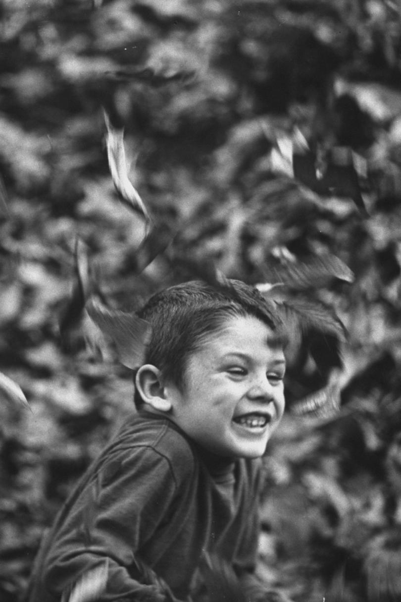 Boy with Leaves Falling Around Him