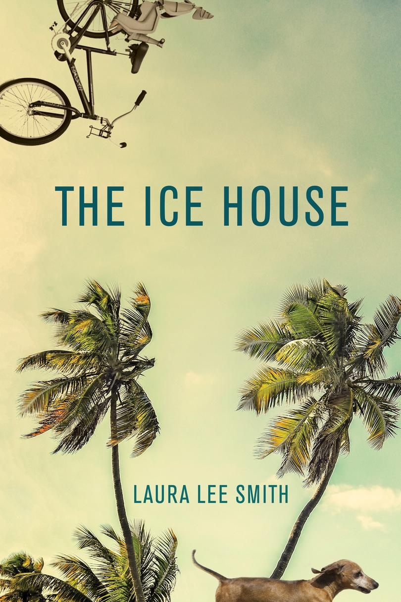 The Ice House by Laura Lee Smith