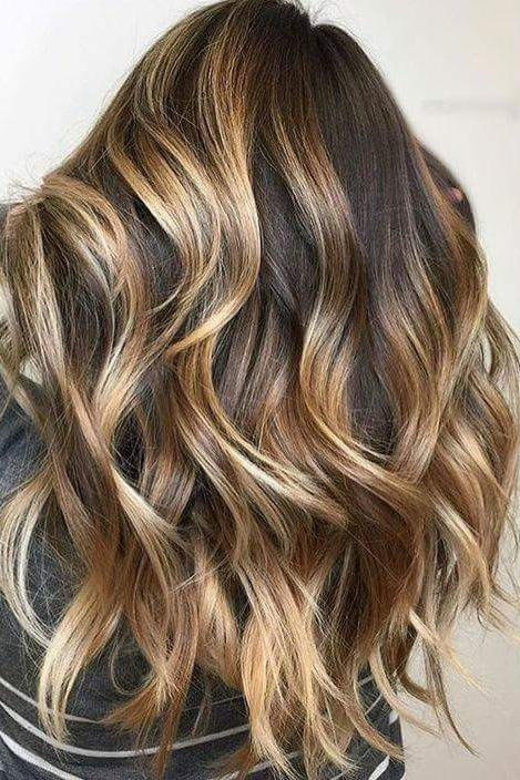 Tortoiseshell Brown Hair With Honey Blonde Highlights