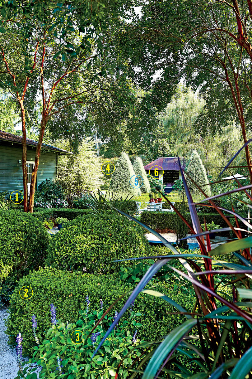 Anthony Brewington's Plant Picks for his Bungalow Garden