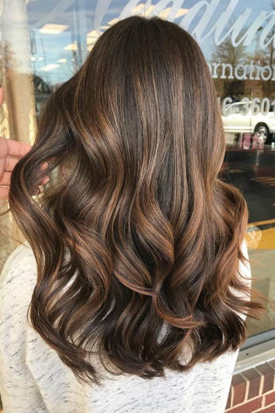 Hazelnut Highlights