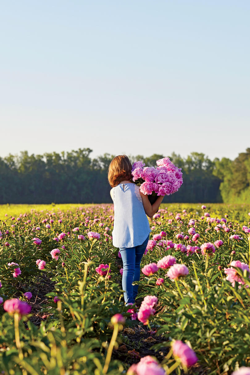 Peonies Take Patience–And Are Worth the Wait