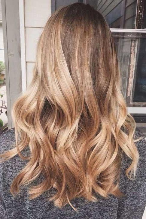 Subtle Blush Toned Highlights