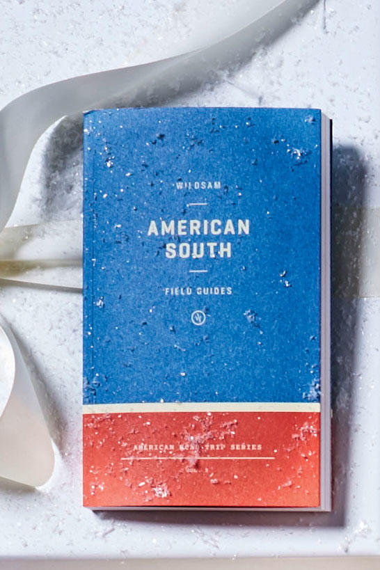 American South Guide Book