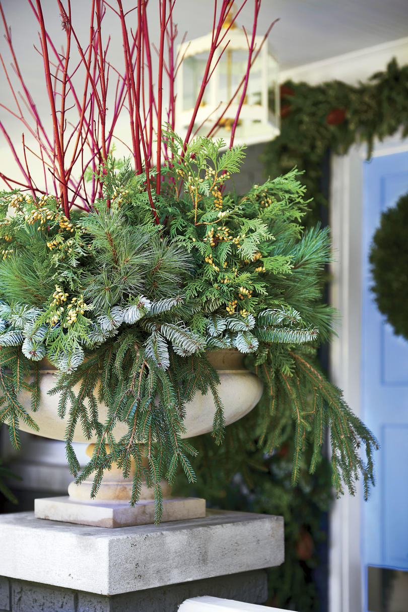 Fresh Christmas Greenery Urns with Red Branches