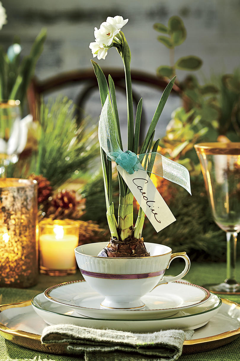 Paperwhite Place Card Party Gift