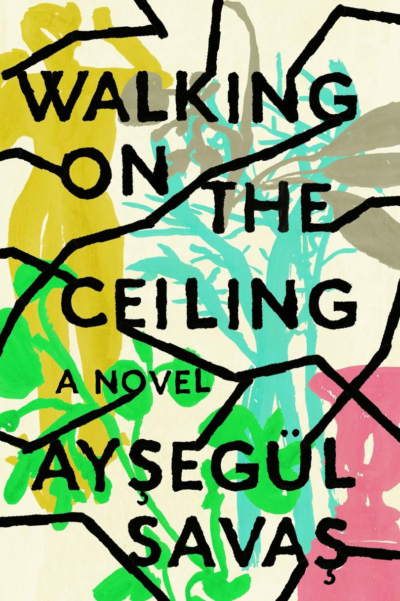 Walking on the Ceiling by Aysegül Savas