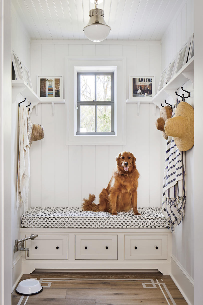 2019 Idea House Mudroom with Golden Retriever Dog