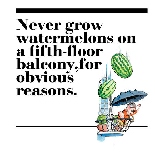 2. Never grow watermelons on a fifth-floor balcony, for obvious reasons.