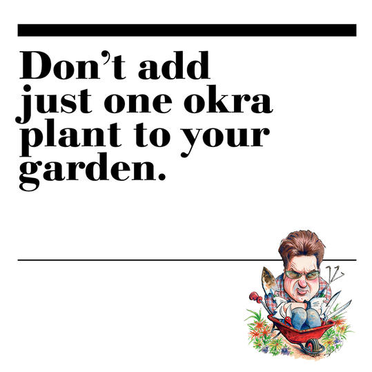 5. Don't add just one okra plant to your garden.