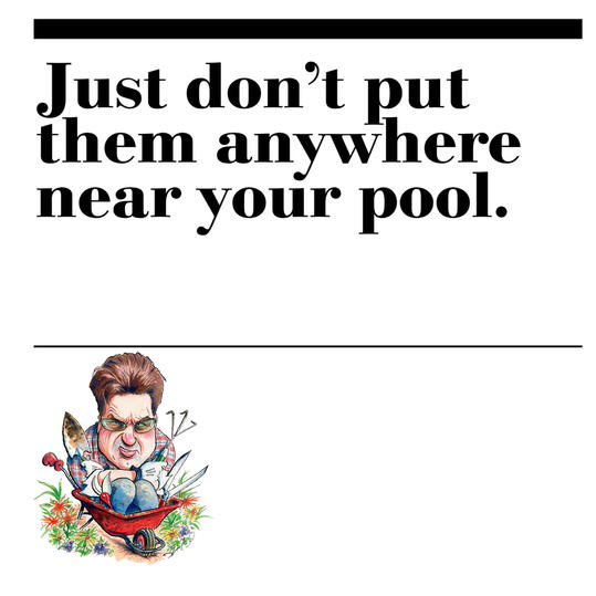 8. Just don't put them anywhere near your pool.