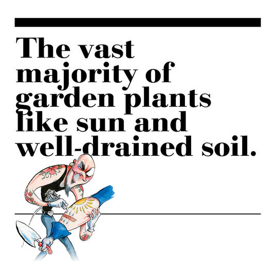 17. The vast majority of garden plants like sun and well-drained soil.