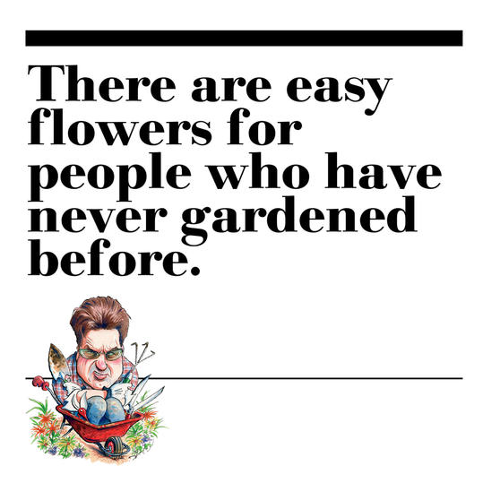 34. There are easy flowers for people who have never gardened before.