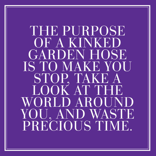 36. The purpose of a kinked garden hose is to make you stop, take a look at the world around you, and waste precious time.