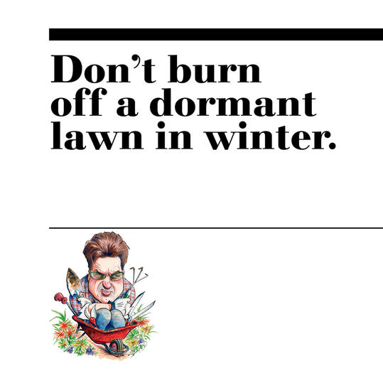46. Don't burn off a dormant lawn in winter.