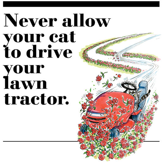 48. Never allow your cat to drive your lawn tractor.