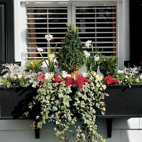 Winterize Your Window Box & Add Charm with Window Boxes - Southern Living pezcame.com