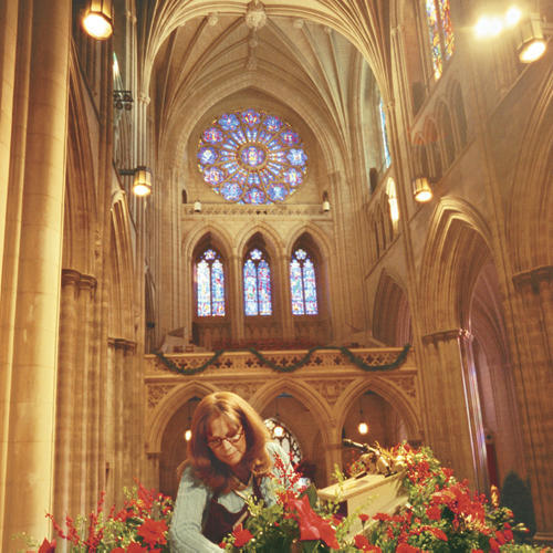 Cathedral in Bloom