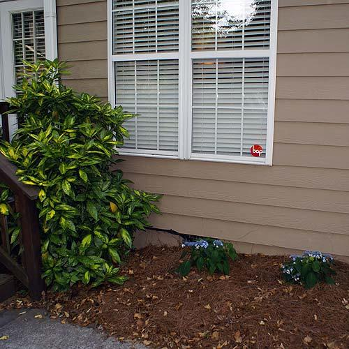 Shrubs were too young to make an impact, and the window frame blends into the facade.