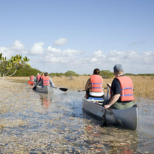 Florida Everglades: Lake Okeechobee