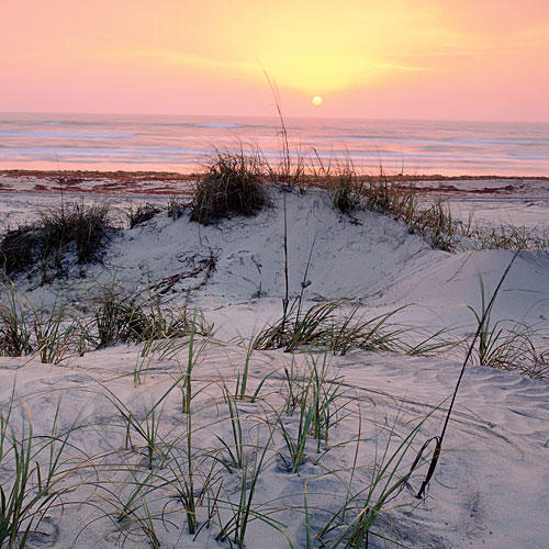 Padre Island National Seashore