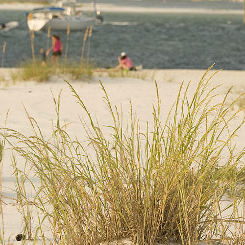 Spring Break Travel Ideas: Gulf Shores, AL