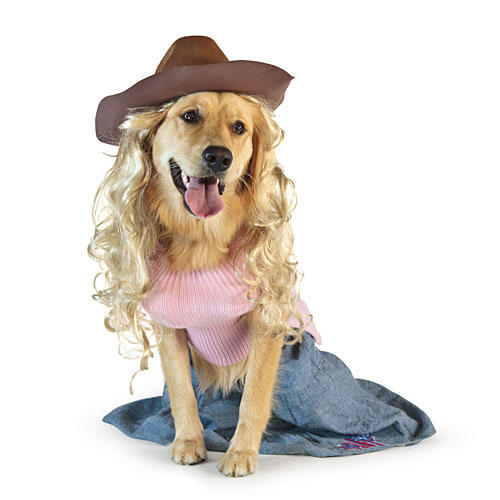 Doggy Parton Dog Costume