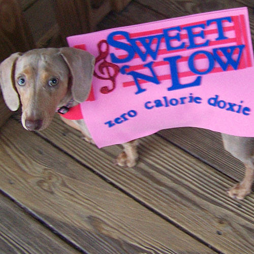 Sweet 'N Low Dog Costume