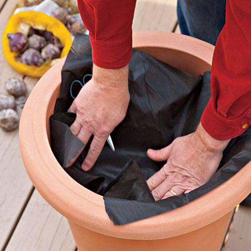 How to Plant Bulbs in a Container: Step Two