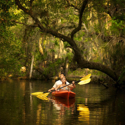 Kayaking the Estero River