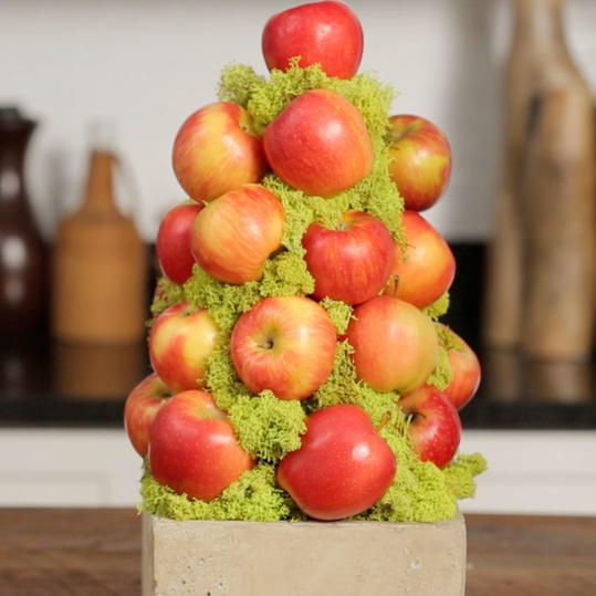 How To Make an Apple Topiary