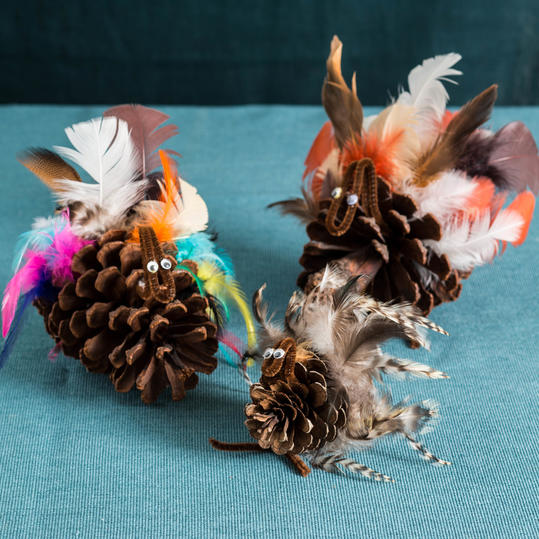 Pinecone Turkey Step 3
