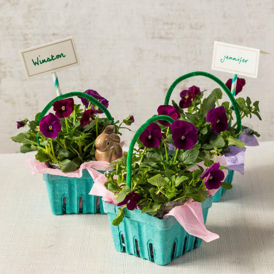 Easter Egg Carton Planter Baskets