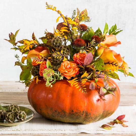 RX_1509 Fall Pumpkin Centerpiece Step 3