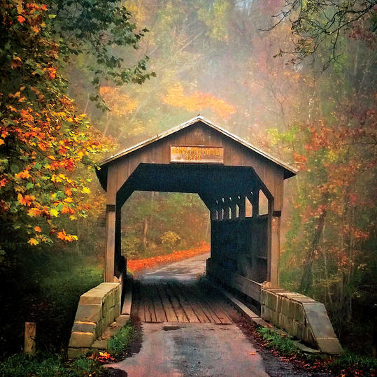 The South S Best Fall Colors Southern Living