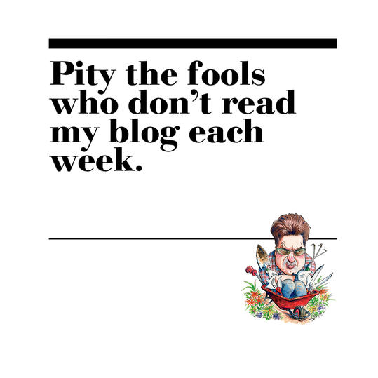 50.  Pity the fools who don't read my blog each week.