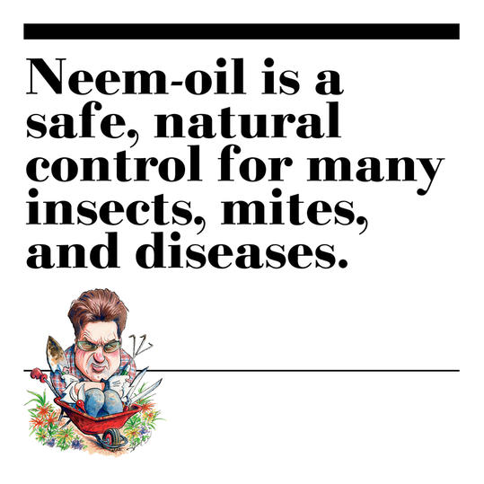 49. Neem-oil is a safe, natural control for many insects, mites, and diseases.