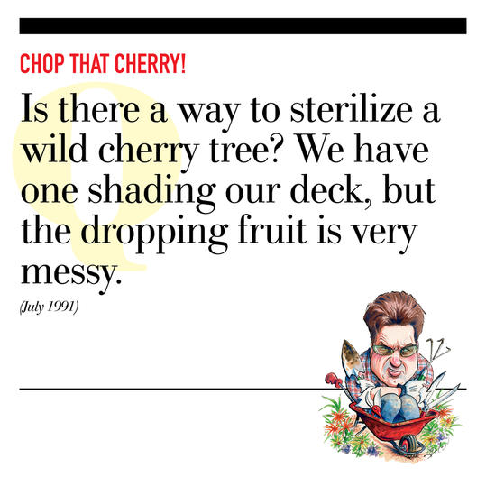 Chop That Cherry!