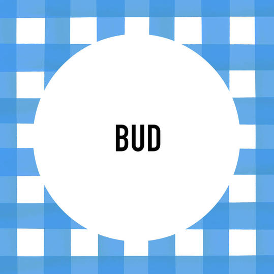 Southern Pet Name: Bud