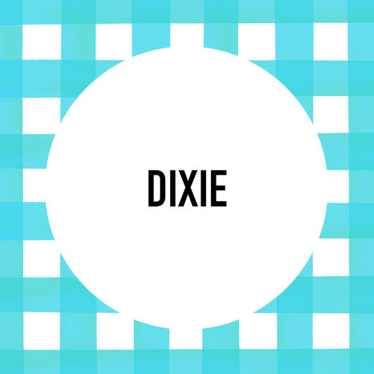 Southern Pet Name: Dixie