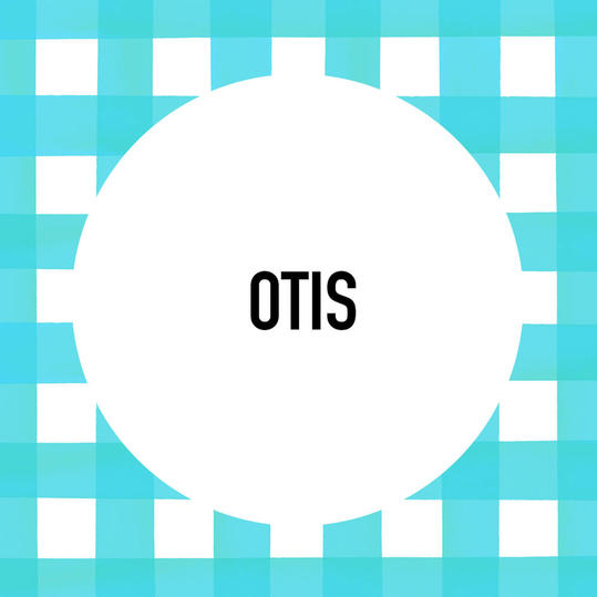 Southern Pet Name: Otis
