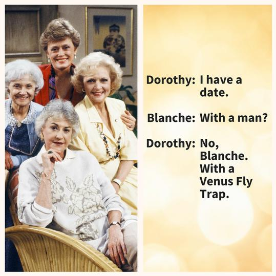 Dorothy, proving her sarcasm is unmatched.