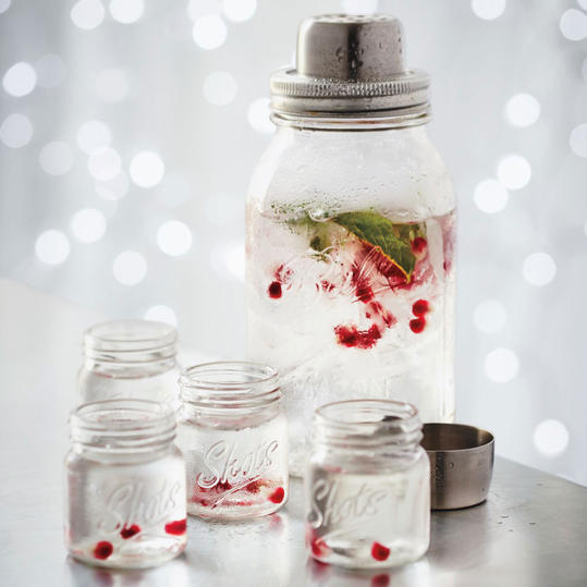 Sur La Table Mason Jar Cocktail Shaker