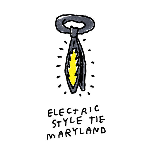Maryland Secret Santa Electric Style Tie