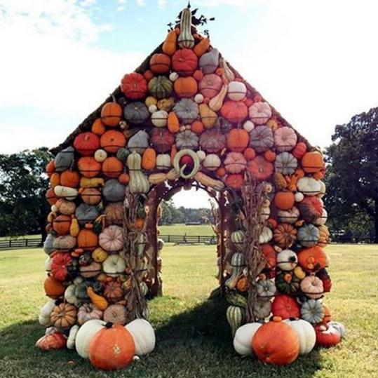 Our Best Instagrams pumpkin house